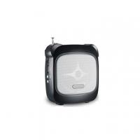 Громкоговоритель поясной. ELECTRO MAX N-53 30 Вт USB и SD с беспроводной гарнитурой